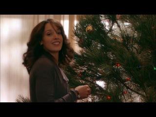 Рождественские приключения семейства Фоксов / The Night Before the Night Before Christmas 2010